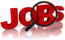 Báo điện tử Người Đưa Tin thông báo tuyển dụng vị trí Trưởng Phòng tổ chức sự kiện